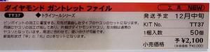 TT-37 ダイヤモンド ガントレット ファイル 解説
