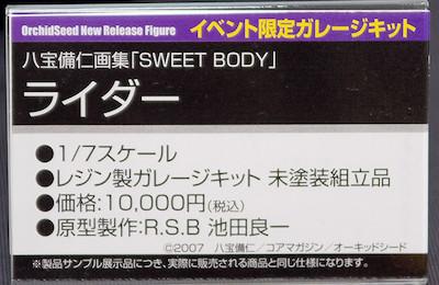 八宝備仁画集「SWEET BODY」ライダー イベント限定ガレージキット ネームプレート