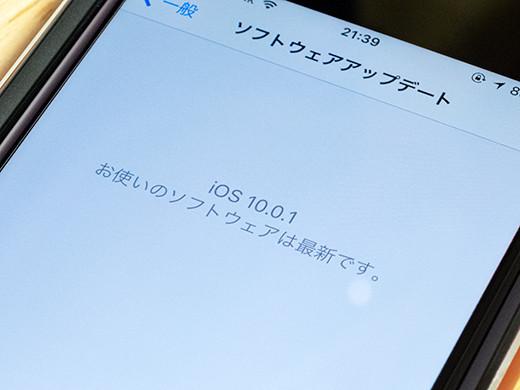 IMG_3525s.jpg